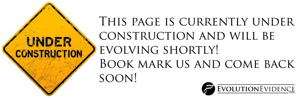 '14383930-dirty-under-construction-sign copy' from the web at 'http://www.evolutionevidence.org/wp-content/uploads/2013/08/14383930-dirty-under-construction-sign-copy-1024x336.jpg'