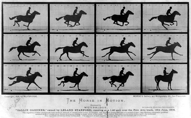 http://en.wikipedia.org/wiki/Eadweard_Muybridge#Stanford_and_horse_gaits