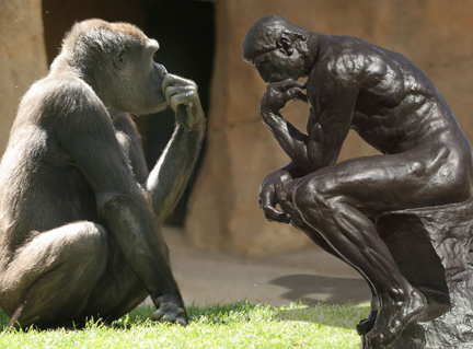 evolutionary-psych