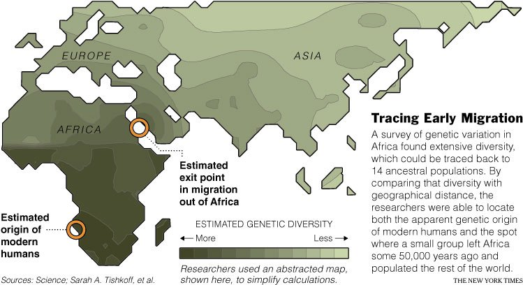 When species are in a particular location for a long time, genetic diversity tends to go up as new mutations are added to the population.  When species migrate into new territories, genetic diversity tends to be low because those new areas are populated by a few individuals. One way of reading this diagram is a time scale.  The more genetic diversity in an area, the longer humans have lived there.  Darwin knew this and speculated that humans originated in Africa, since most great apes are native there. http://whyevolutionistrue.wordpress.com/2011/04/16/where-on-earth-did-language-begin/